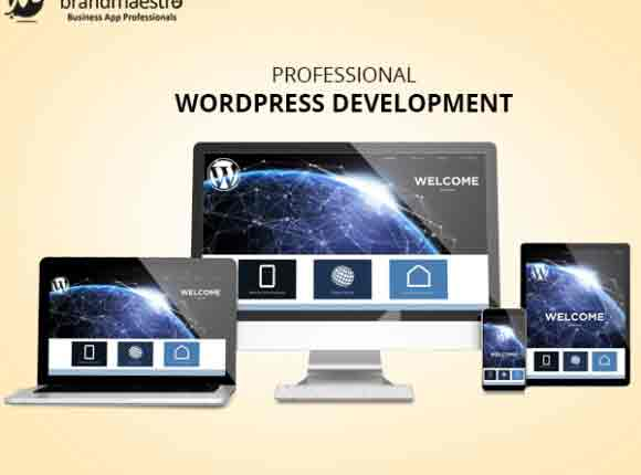 Why Should You Go For Professional WordPress Development?