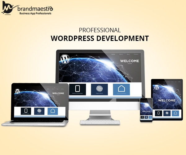 Professional wordpress development